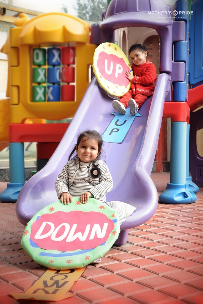 CUTE PRIDEENS EXCITEDLY LEARN CONCEPT OF UP & DOWN