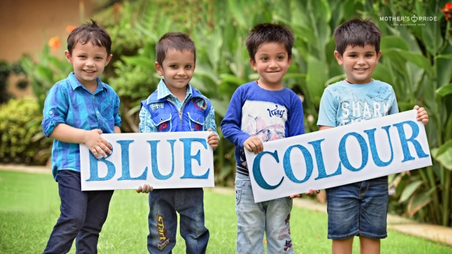 blue-color-day 2019